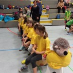 15. Januar 2016 - Risiko raus Schulsportwettkampf (1)